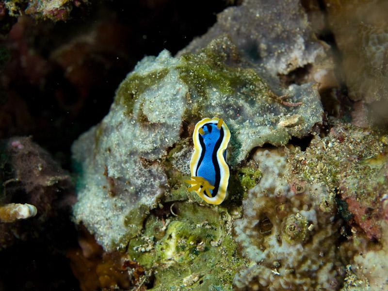 Photo at Tanjung Pisok: