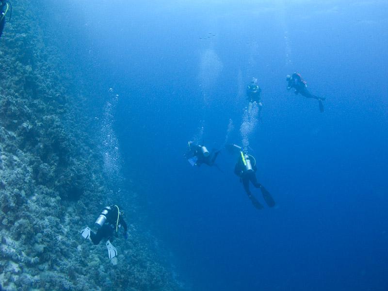 Photo at Thomas Reef:
