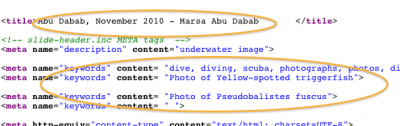 HTML source - populating title and page keywords